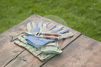 Garden gloves and clippers on table
