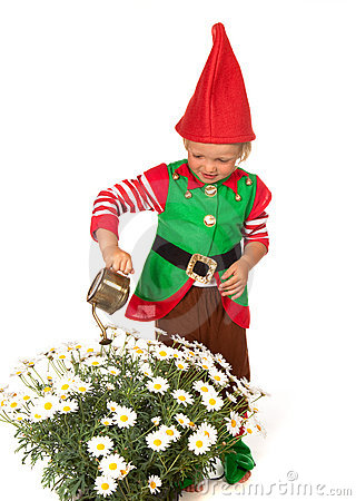 Free Garden Gnome Boy With Daisies Royalty Free Stock Images - 15153369