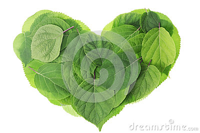 Garden green leaves heart