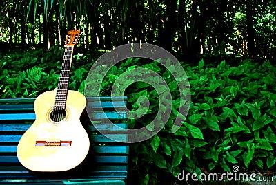 Garden guitar