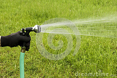 Garden hose spray