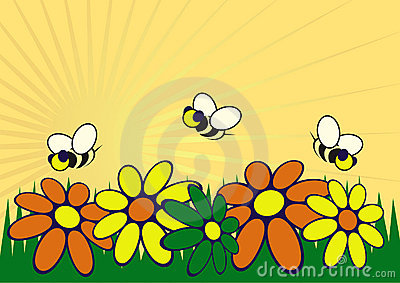 The garden illustration