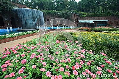 Garden,Jeju Volcanic Island