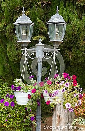 Garden lamp and  Petunia flowers