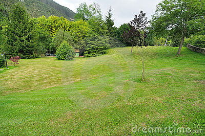 Garden with lawn and trees