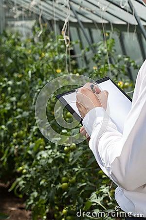Garden manager during job