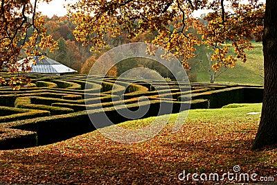 Garden maze in autumn