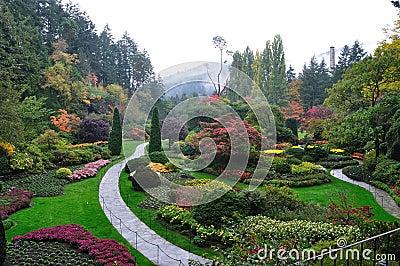 Garden in mist