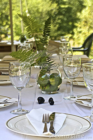 Free Garden Party Stock Photos - 20165473
