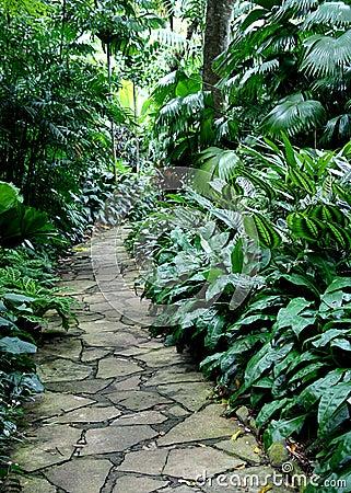 Garden Path #4