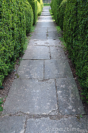 Free Garden Path And Hedgerow Stock Images - 14755944