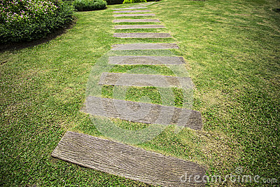 Garden path with grass growing up between the wooden