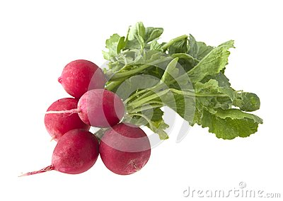 Garden radish with green leaves