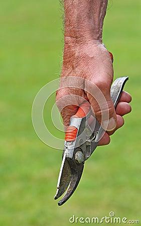 Garden s tool