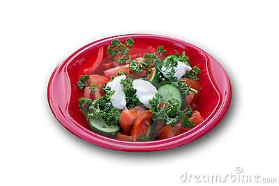 Garden Salad At A Picnic (With Clipping Path)