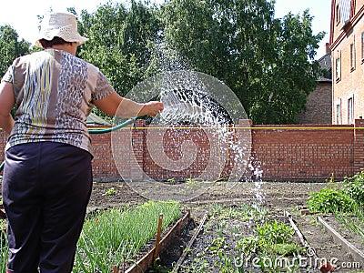 Garden site