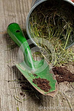 Garden spade with ground