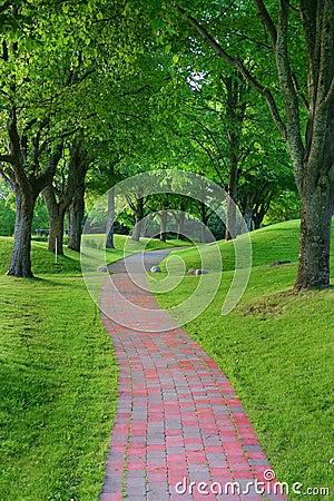 Garden stone path in park