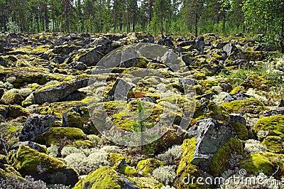 Garden of Stones.