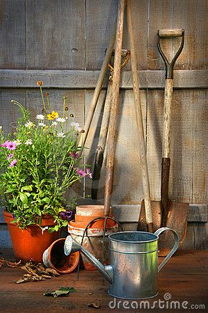 Free Garden Tools And A Pot Of Summer Flowers In Shed Stock Photo - 10179570