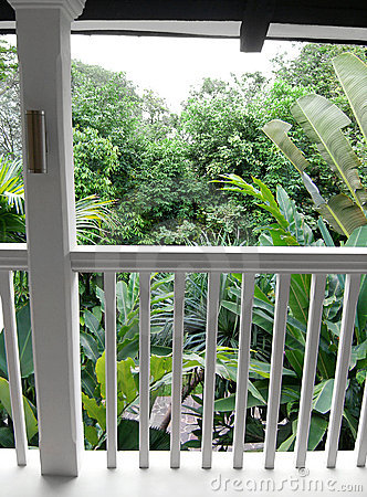 Garden view from balcony of tropical house
