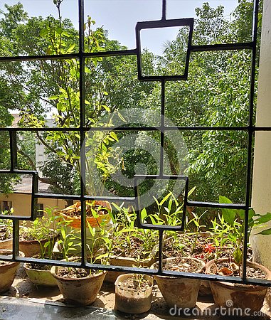 Free Garden View From Home Window Stock Photography - 158120992