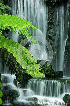 Free Garden Waterfalls Royalty Free Stock Images - 8971009