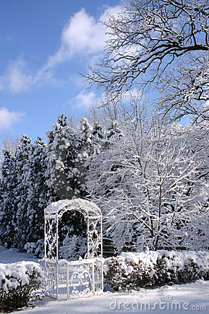 Garden In Winter Royalty Free Stock Photos - Image: 505628