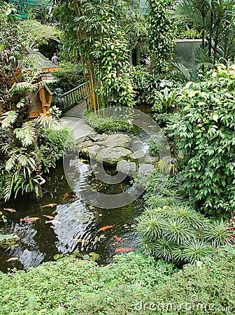 Free Garden With Koi Ponds2 Royalty Free Stock Photos - 2024918