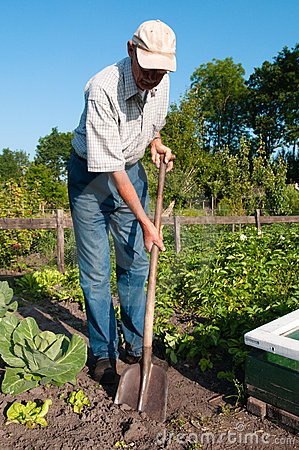 Free Garden Work Royalty Free Stock Photography - 14892947