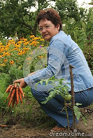 Free Gardener Royalty Free Stock Image - 1055696