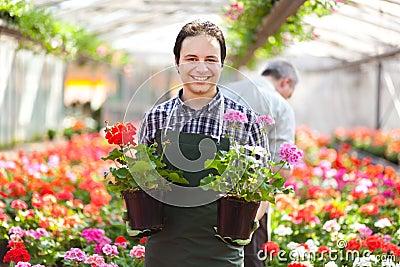 Gardener holding flowers