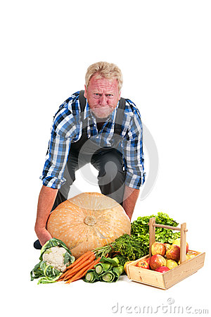 Gardener lifting pumpkin