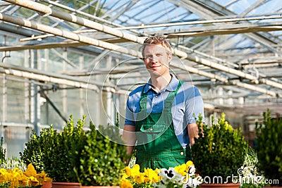 Gardener in market  nursery