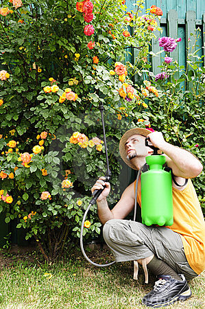 Gardener with pump sprayer