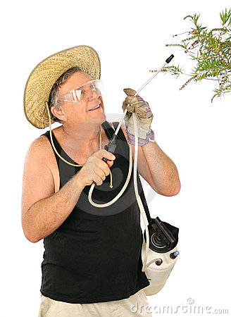 Gardener Spraying Plants
