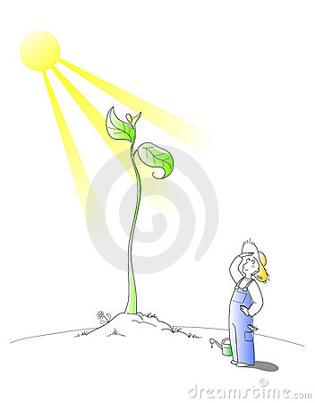 Gardener - vector cartoon