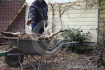 Gardener with wheelbarrow