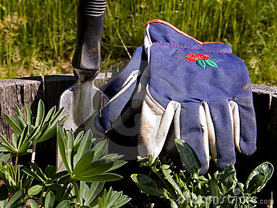 Gardeners Gloves and Hand Shovel