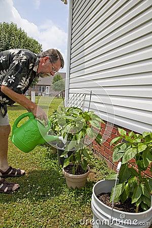 Gardening
