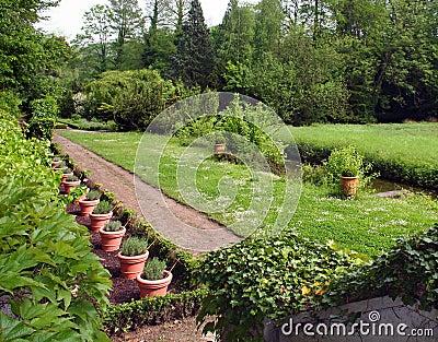Garden in french park