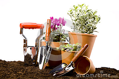 Gardening concept isolated