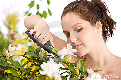 Gardening - woman cutting flower with shears
