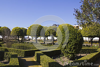 Gardens of the alcazar in Cordoba
