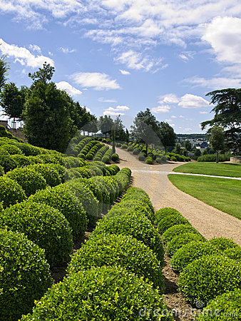 The Gardens of Amboise Castle