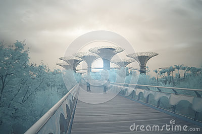 Gardens by the Bay, infrared, long exposure Editorial Image