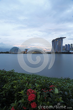 Gardens by the Bay & MBS with bush flower