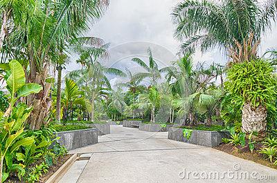 Gardens by the Bay, Singapore Editorial Stock Image