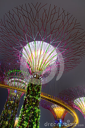 Gardens by the Bay in Singapore Editorial Stock Image