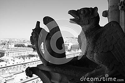 Gargoyle in Notre-dame